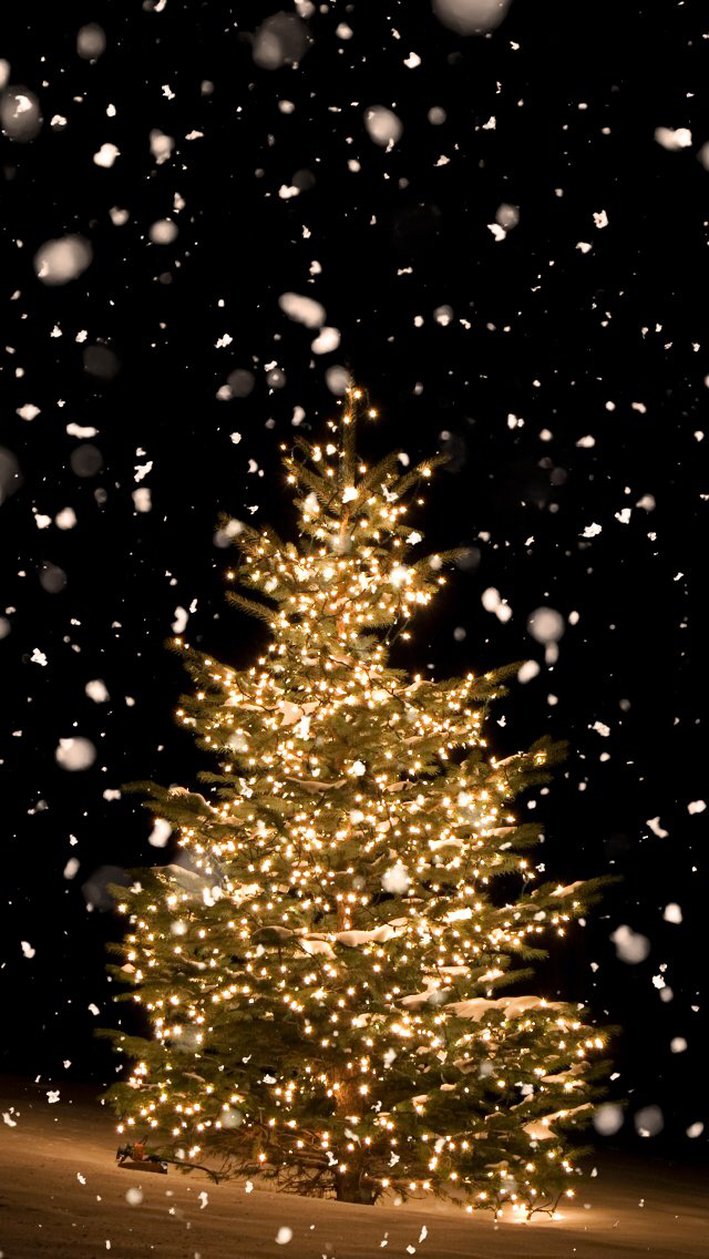 Christmas Tree Wallpaper Iphone