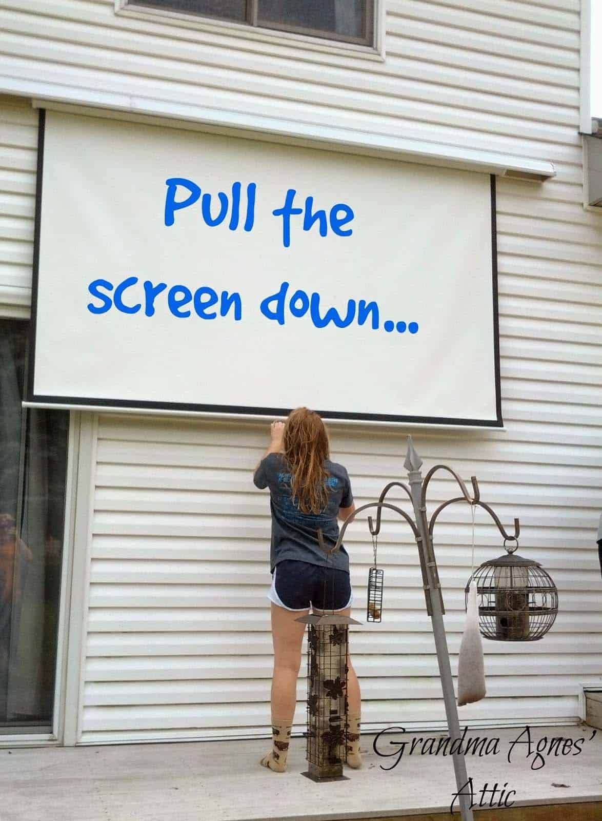 Outdoor Pull Down Projector Screen
