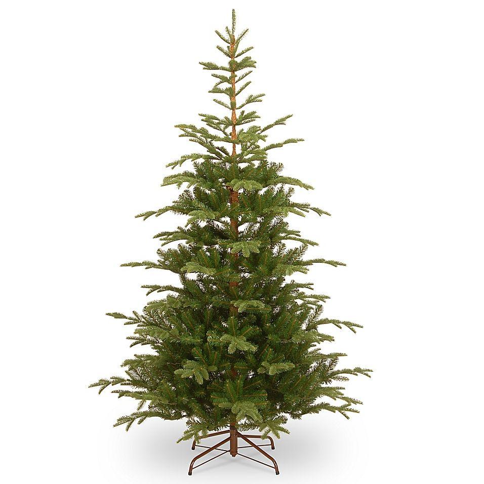 National Christmas Tree Company