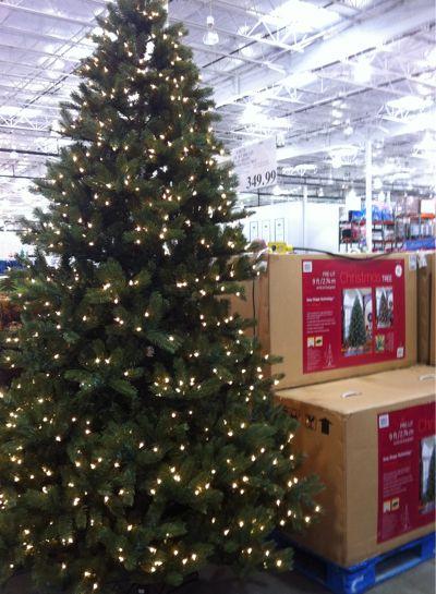 Pre Lit Christmas Trees Costco