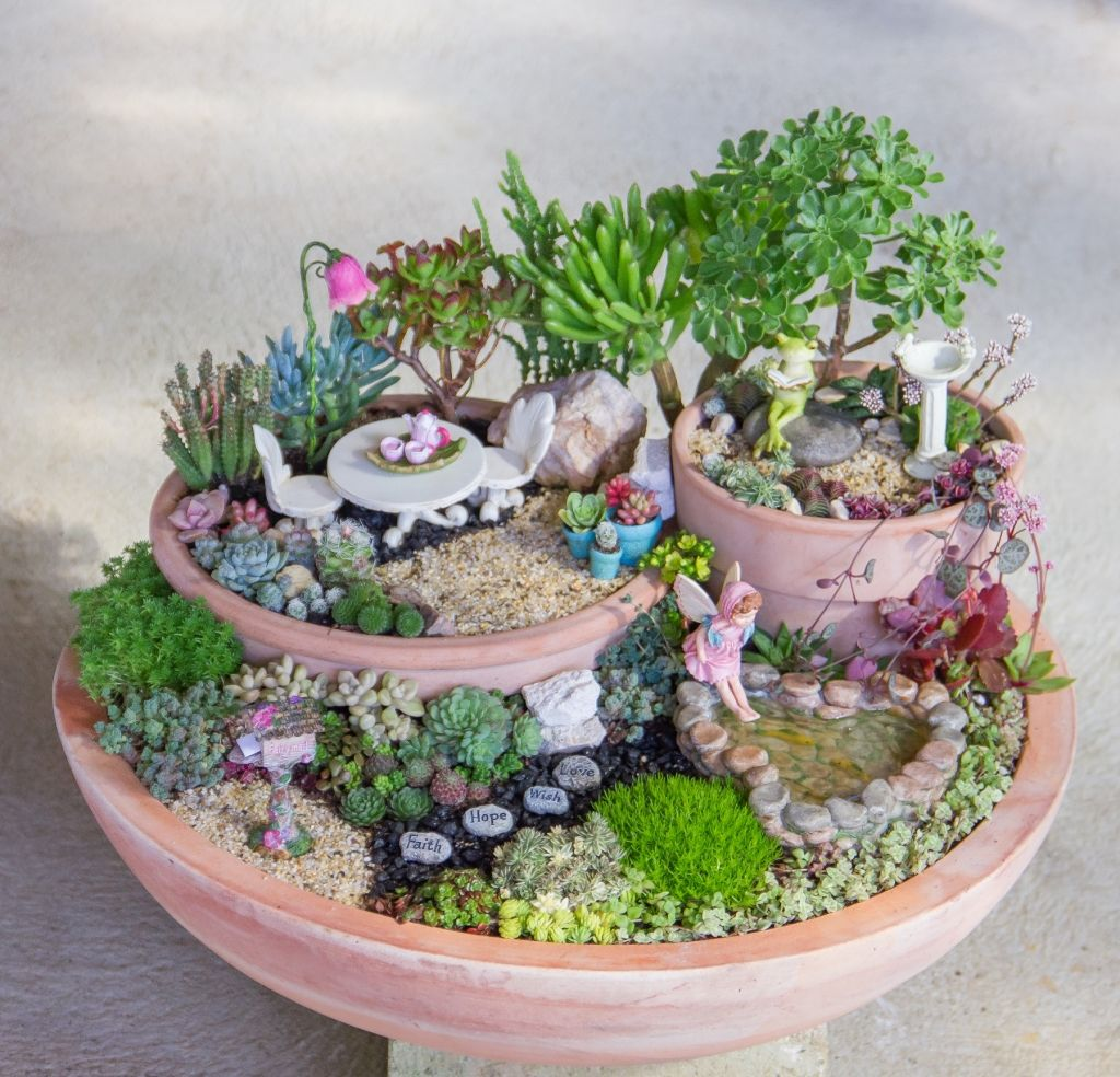 Succulent Fairy Garden Ideas